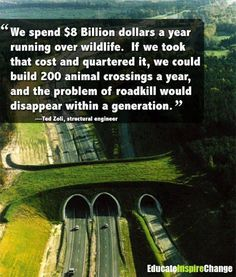 Wildlife crossings have already enjoyed phenomenal success in many countries, saving the lives of millions of animals. More information: http://arc-solutions.org/