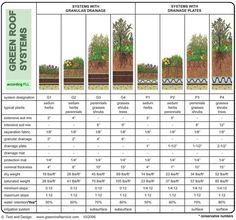 green roof systems - intensive and extensive with different plantings and depths
