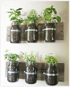 Super easy hanging herb garden for the kitchen or the patio.