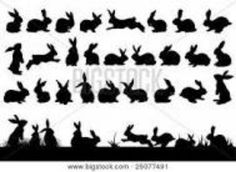3rd row far right bunny - standing