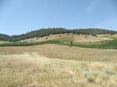 Beautiful scenery near Azrou