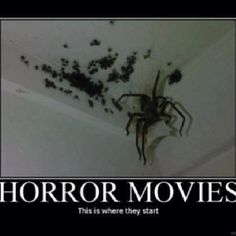 Horror Movies, Decor, Horror Films, Scary Movies, Decorating, Dekoration, Deco, Decorations, Deck