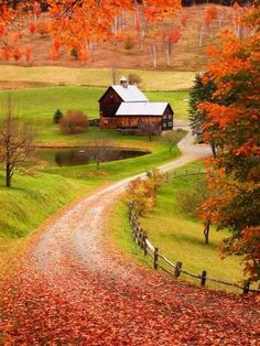 Beautiful Autumn (photography, photo, picture, image, beautiful, amazing, travel, world, places, nature, landscape, house, road, red leafs, orange, fall)