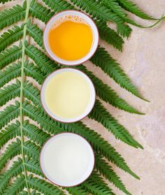 Make aloe vera cleanser with this tutorial.