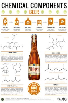 Infographic: What Gives Beer Its Flavor? - Certainly the chemistry of beer brewing is apparent, but here's some real scientific detail. Beer 101, All Beer, Wine And Beer, Whisky, Beer Calories, Craft Bier, Beer Recipes, Homebrew Recipes, Coffee Recipes
