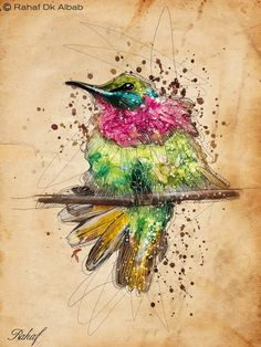 Digital drawings and watercolors paintings by Rahaf Dk Albab Art And Illustration, Hummingbird Art, Art Techniques, Love Art, Art Pictures, Amazing Art, Awesome, Design Art, Art Drawings