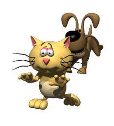 Run kitty Run. ...      Hebergeur d'image