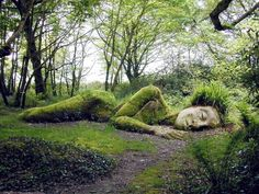 Kind of Freaky, but wouldn't it be fun to put this somewhere in our forest!