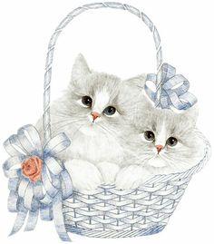Gatos - Carla Simons - Picasa Web Albümleri