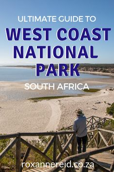 West Coast National Park: the ultimate guide - Roxanne Reid Sequoia National Park, Kruger National Park, National Parks, Places To Travel, Places To Go, White Sand Beach, Africa Travel, West Coast, Family Travel