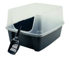 Amazon.com: IRIS Open-Top Litter Box with Shield and Scoop: Pet Supplies