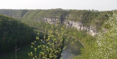 KY River Palisades - Nature Conservancy page
