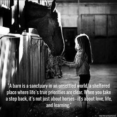 Why my true home will always be the barn.