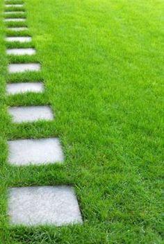 <3 grass lawn