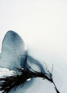 "Beth Nicholas / ""Watching you sleep"", 2010, Ink and Oil, 85cm x 60cm"