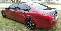 2004 Nissan Maxima SE Pinstripe Tuning for sale 2004 Nissan Maxima, Performance Exhaust, Nissan Altima, Car Tuning, Cars For Sale, Motorcycles, Cars For Sell, Motorcycle, Engine