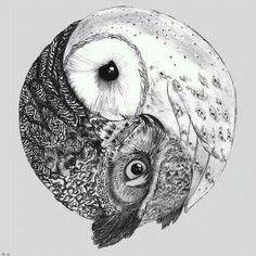 Owl yin yang ♥