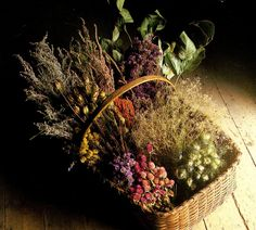 A bountiful basket, indeed! ~Splendor