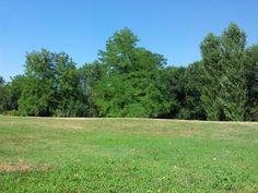 Parco Monluè