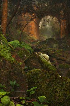 Forest Portal, Australia