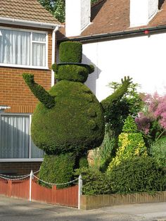 Topiary Man outside a house in Kent, England - photo by lovedaylemon, via Flickr