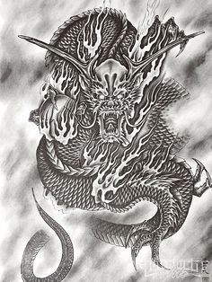 horiyoshi dragon and tiger drawing | Tattoo Artist Horiyoshi Iii Dragon