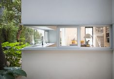 Dwell - Retired Couple Build Modern in Mexico City
