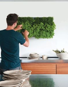 Vertical herb garden in kitchen - I can't imagine it being very easy to water inside but it is cool
