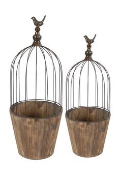 Following this bird cage theme but using them for reclining plants
