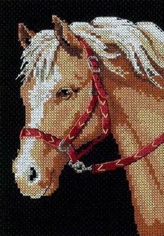 Cross Stitch Horse, Cross Stitch Animals, Counted Cross Stitch Kits, Diy Bead Embroidery, Cross Stitch Embroidery, Cross Stitching, Cross Stitch Designs, Cross Stitch Patterns, C2c