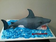 Shark Cake, Dinosaur Cake, Shark Birthday Cakes, 4th Birthday, Birthday Ideas, Underwater Birthday, Dolphin Cakes, Animal Print Bedding, Boat Cake