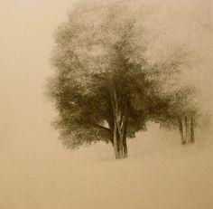 Shigeki Tomura  Image of a Tree VI
