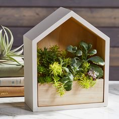 Create a cute wall planter for small plants using a shadow box. The box adds depth to the wall decor and gives the project a contemporary feel. Create a cute wall p Diy Wall Planter, Wood Planters, Planter Boxes, Garden Planters, Wood Vase, Succulent Planters, Planter Ideas, Flower Planters, Balcony Garden