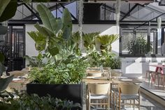 Cafe in Abbotsford, Melbourne by Mim Design. A former auto repair garage has been transformed by Mim Design into a contemporary hospitality space in the guise of a sprawling indoor botanical garden. Mim Design, Cafe Design, Bar Lounge, Commercial Interior Design, Commercial Interiors, Restaurant Bar, Edison House, Garden Cafe, Retail Interior