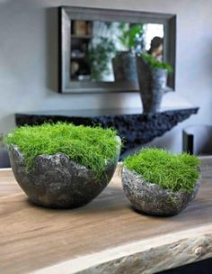 wavy bowl supplied by koberg If there are some patterns, or if the plants are placed on the…want those urns! Ikebana, Garden Spaces, Garden Pots, Big Garden, Decoration Restaurant, Table Decoration, Concrete Crafts, Interior Plants, Plant Decor
