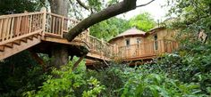 Treehouse at Harptree Court. A fabulous, sky high, en suite bolthole, beautifully handcrafted and filled with beautiful things.
