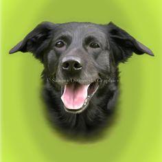 Jet- Dog. Digital Illustration.