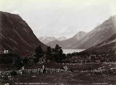 FAKf-100244.160262 «Utsigt mod Norangsfjorden»(JSR-Kode: A8-A-Natur) Landskap, fjord, fjell, Ørsta, Norangsfjorden | 1880 - 1900