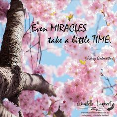 Even Miracles take a little time!⠀ ⠀ Don't expect something extraordinary will happen with the click of your fingers, or the blink of your eyes. Everything takes time. The best miracles take the most time. ⠀ ⠀ My little miracle came after a few years, a few heartaches. My daughter is my little miracle.⠀ ⠀ #fantasybook #loveforfantasy #writersofinstagram #lovebooks #readingandwritingislife #lifeasaparent #momlife #motherlife #creativewriters Fantasy Books, Fingers, To My Daughter, Take That, Author, Shit Happens, Eyes, Creative, Instagram