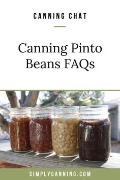 Tammy is canning pinto beans, but she has several questions about canning them safely. Here's what I told her... Corn Cob Jelly, Corn On Cob, Stewed Tomatoes, Canning Tomatoes, Dandelion Jelly, Pear Butter, Canning Vegetables, Homemade Ketchup, Plum Jam