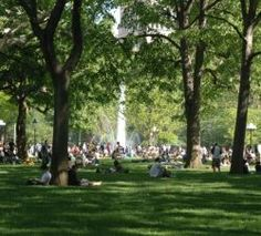 Washington Square Park is an awesome place to hang out and people watch beneath middle-aged trees.