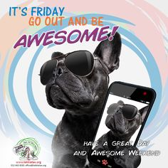 Friday is here and the weekend is near. Go out and be Awesome! – Have a great day and an Awesome weekend. www.tekkietax.org  #tekkietax #makethecirclebigger #takehands #lovingtekkies #jamblikprojek South African Celebrities, Long Term Care Insurance, Have A Great Day, Disability, Grateful, Going Out, How To Find Out, Wings, Bring It On