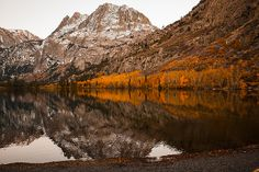 HOLIDAY SALE 25% OFF all photos in my gallery Coupon Code: TJYBUV  Autumn Golden Foliage on Mountain Lake Reflection Fine Art Photography Print  I took this photograph while on a fishing/photography trip to June Lake in the Sierra Nevada Mountains of California.   Website: jerry-cowart.artistwebsites.com  http://fineartamerica.com/featured/autumn-golden-foliage-on-mountain-lake-reflection-fine-art-photography-print-jerry-cowart.html?newartwork=true