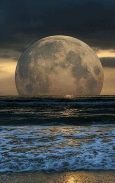 Full moon rising above the ocean is a captivating experience. Moon Photos, Moon Pictures, Nature Pictures, Beautiful Pictures, Moon Pics, Stars Night, Shoot The Moon, Moon Magic, Beautiful Moon