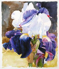 Purple Iris - from http://www.touchofart.eu/Marta-Hucall/mhu4-Purple-Iris/