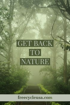 Learn the best ways to live green and help save our Planet. Green Life, Our Planet, Planets, Live, Nature, Naturaleza, Off Grid, Natural, Mother Nature