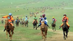 Double world record joy for Mongolian horse riders | Guinness World Records