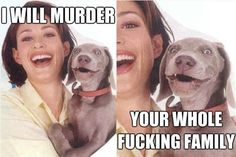 funny captions 5 Pictures go better with captions (32 Photos)