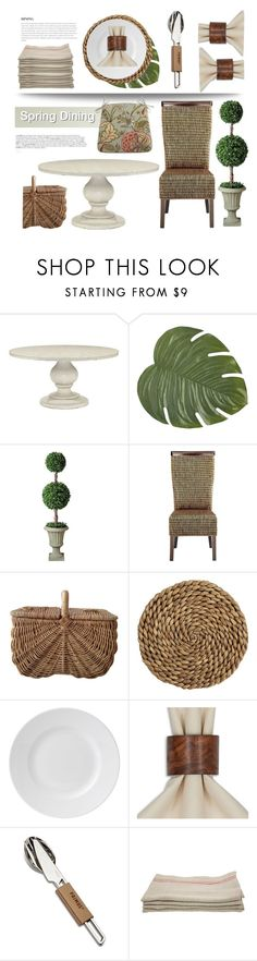 """""""Spring Dining"""" by pattykake ❤ liked on Polyvore featuring interior, interiors, interior design, home, home decor, interior decorating, Reine, Pier 1 Imports, Improvements and BoConcept"""