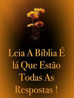 Bíblia é lá que tudo se renova e responde